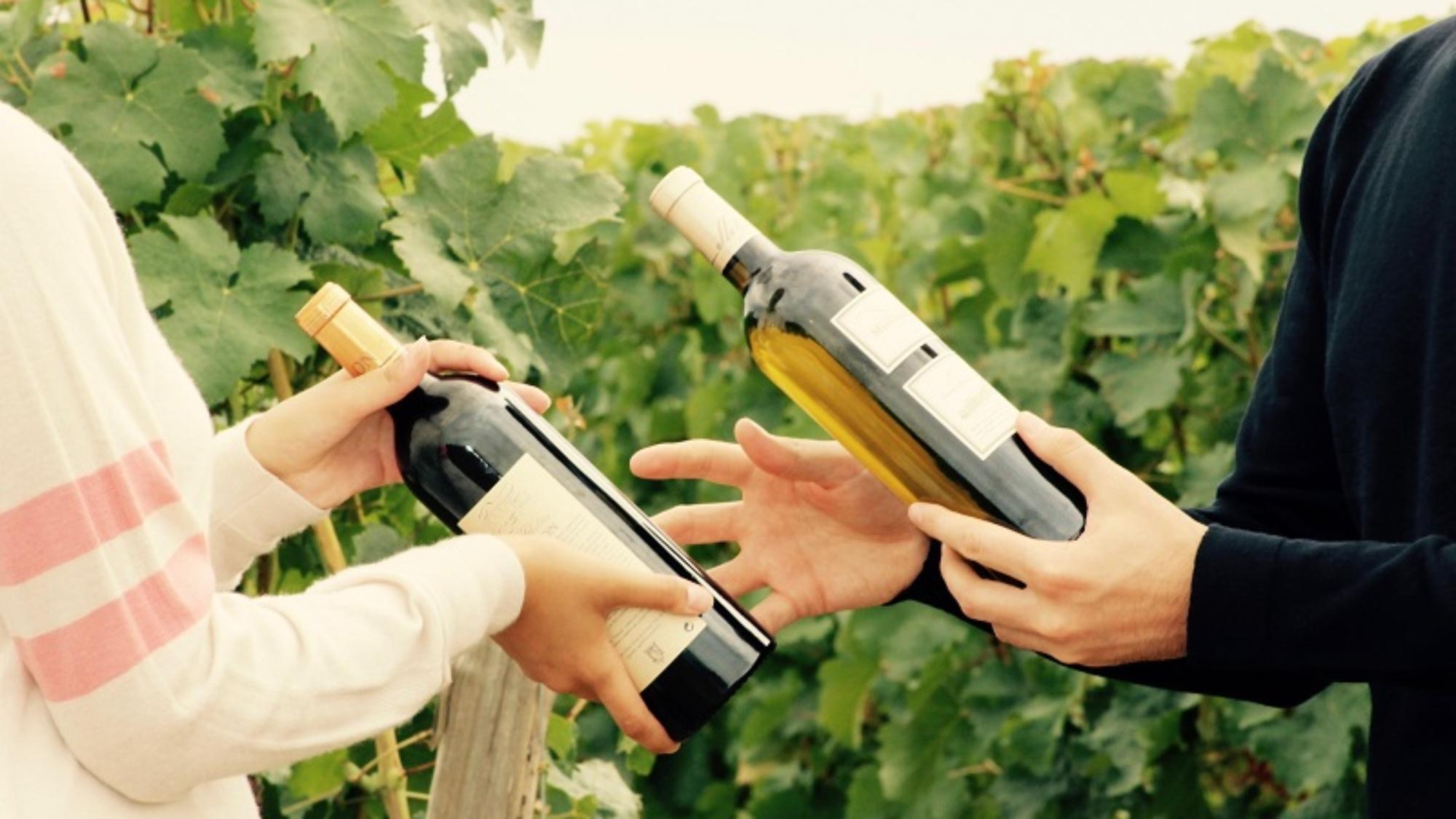 troc wine 3